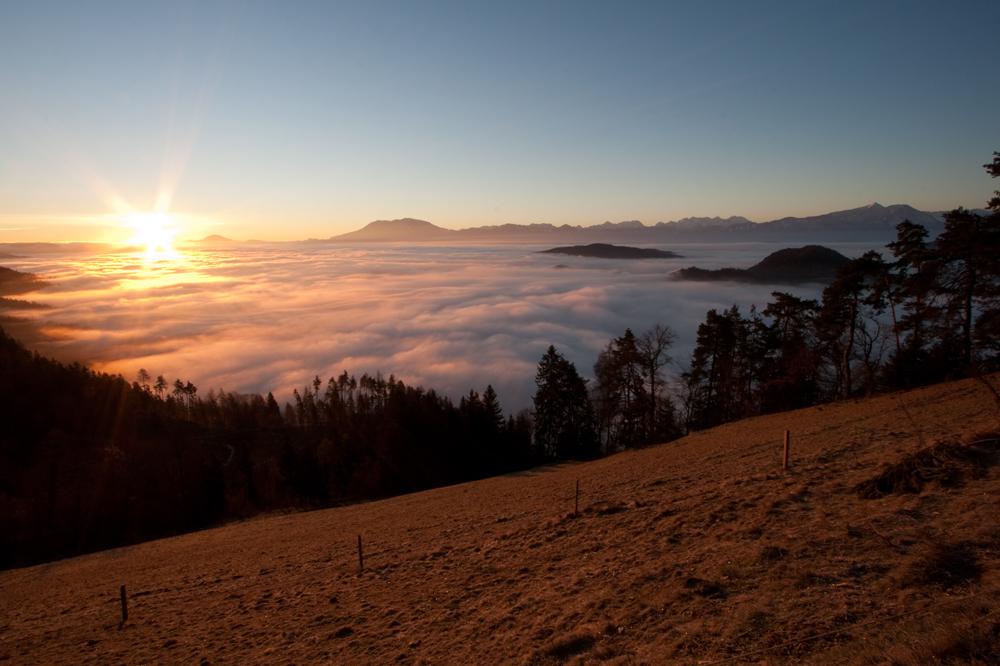 Nebelmeer am Morgen